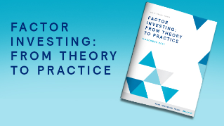 Factor Investing: From Theory to Practice